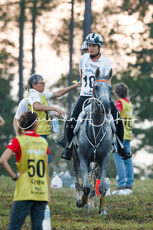 Schuiten Louna, BEL, Sabah du Courtisot<br /> World Equestrian Games - Tryon 2018<br /> © Hippo Foto - Sharon Vandeput<br /> 12/09/2018