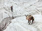 Donkey trek in the Karakoram and Hindukush