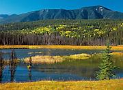 Wapta Marsh<br /> Yoho National Park<br /> British Columbia<br /> Canada
