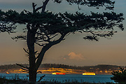 Tug boat with Whidbey Island and Mount Baker in the distance, afternoon light, October, Admiralty Inlet, Salish Sea, view from Fort Worden State Park, Jefferson County, Port Townsend, Washington, USA