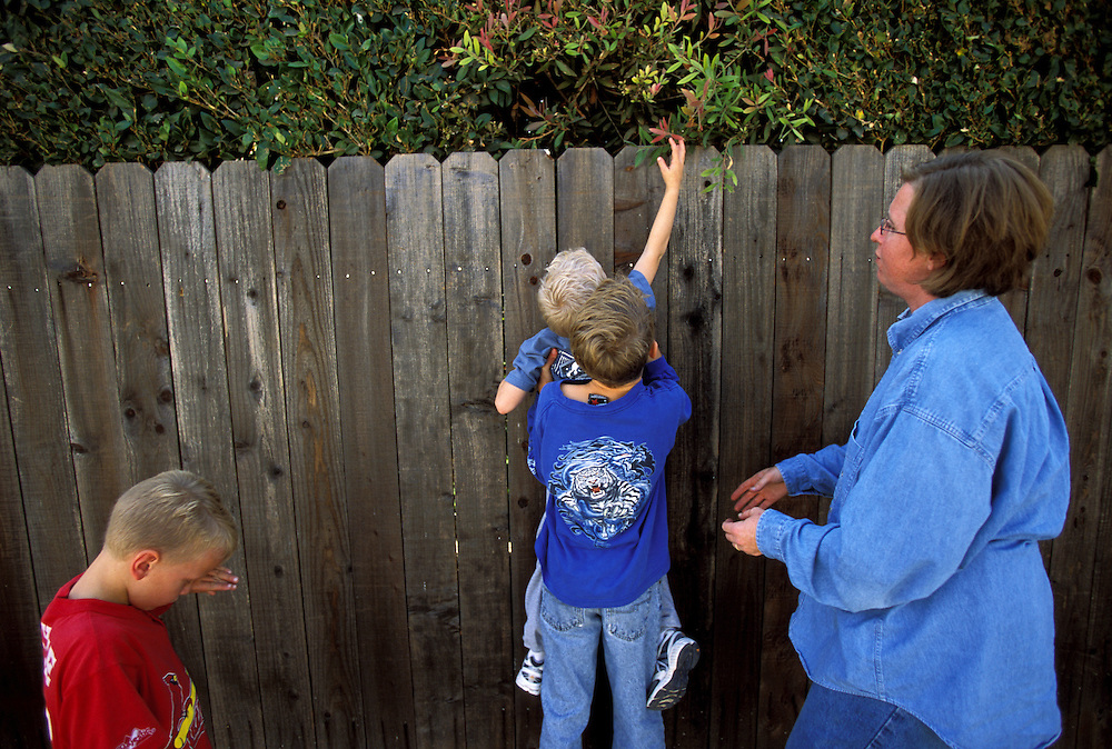 Jeanne incorporates a variety of lessons outside the home. A science field trip down the alley behind their home in search of flowers coincided with a lesson on the various stages of flower development. Andrew spotted a flower but needed help from Trevor to reach it.