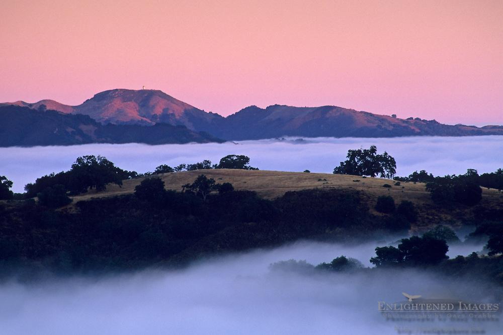 Coastal Fog, hills, and trees at sunrise, Cachaqua Road, above Carmel Valley, Monterey County, California