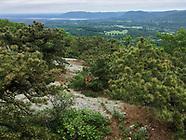 Schunnemunk Mountain Hike (May 2018)