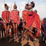 Wilson's wedding day...Young men called Morans are competing in jumping as high and straight as possible, a copetitive dance called adumu, at Wilson's wedding. The Morans are you men almost ready for the coming of age ceremony held every 10-15 years. The wedding is a big day for everybody with lots of dancing and celebration...It is mainly Maasais who live in the Loita Hills up above the Serengeti plains. They live in small villages and communities called bomas and live mainly of raising and selling live stock such as cattle and goats. Its a very remote region in Kenya, hard to get to without a four wheel drive with very little infrastructure and up till 2010 no mobile phone network. The Maasais are well known though out Kenya and the world for their colorful clothing and their way of keeping their old traditions alive.