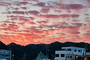 """Magenta sunset light illuminates clouds over Nachikatsuura, Higashimuro District, Wakayama Prefecture, Japan. The impressive Kumano Nachi Taisha, one of the three Kumano Shrines, is just 20 minutes by bus from Nachi Station. These shrines form part of the """"Sacred Sites and Pilgrimage Routes in the Kii Mountain Range"""" UNESCO World Heritage Site. In Nachikatsuura, don't miss the impressive tuna market auction at 7:00am, easily viewed from above in the open public gallery. (In contrast, Tokyo's restrictive early morning fish auction at Toyosu Market limits viewers via registration and a wall of glass). Japan is the world's biggest consumer of tuna."""