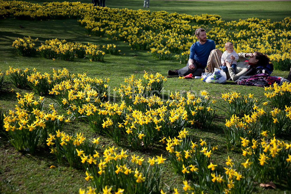 People enjoying being amongst the daffodils in St James Park, London.