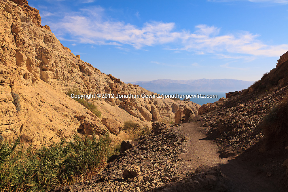 Hiking trail through Nahal David canyon in the Ein Gedi nature preserve. The canyon empties into the Dead Sea Depression and Great Rift Valley. The Dead Sea and Mountains of Moab are visible in the distance. WATERMARKS WILL NOT APPEAR ON PRINTS OR LICENSED IMAGES.