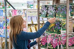 Buying bulbs in a garden centre