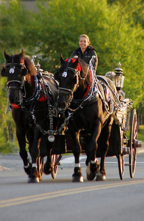 Horse and buggy, downtown Anchorage, Alaska, NR