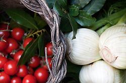 Leverano (LE) - Particolare di un cesto pieno di pomodori e finocchi pugliesi.