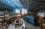 The popular National Railway Museum (NRM) tells the story of rail transport in Britain and houses historically significant artifacts, rolling stock, and over 100 locomotives. Visit it in York, North Yorkshire, England, United Kingdom, Europe. In the 1800s, York became a hub of the British railway network.