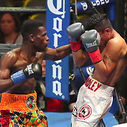 Richard Commey punches Yardley Cruz during a Premier Boxing Champions fight on Saturday, August 4, 2018 at the Nassau Veterans Memorial Coliseum in Uniondale, New York.  (Alex Menendez via AP)