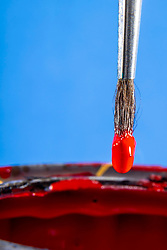 Paint brush up close (macro) dipped in red colored paint