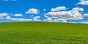 grass hill under blue sky and clouds <br /> <br /> Editions:- Open Edition Print / Stock Image