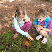 8 year old girls studying a mushroom at Tulley Lake Campground, MA., Royalston