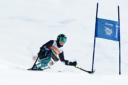 VICTOR Stephani, GER, Giant Slalom, 2013 IPC Alpine Skiing World Championships, La Molina, Spain