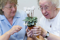 Visually impaired woman admiring a cyclamen plant in a Thrive gardening workshop visiting the NRSB,