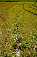Golzern, Switzerland - mowing the meadows.