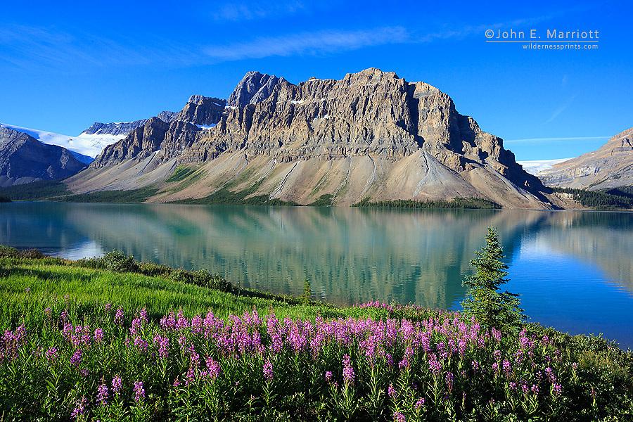 Bow Lake and Crowfoot Mountain, Banff National Park, Alberta, Canada
