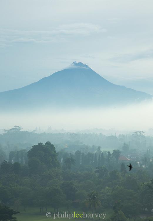 Volcano Merbabu, Borobudur, Kedu Valley, South Central Java, Java, Indonesia, Southeast Asia