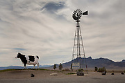 The worlds biggest cow at 12 feet high, Big Bovine, is next to a casino on Nevada 373, not far from the state line with California.