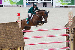 Denis Lynch, (IRL), All Star 5 - Team & Individual Competition Jumping Speed - Alltech FEI World Equestrian Games™ 2014 - Normandy, France.<br /> © Hippo Foto Team - Leanjo De Koster<br /> 02-09-14