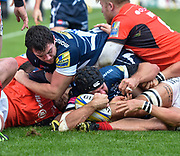 Sale Sharks No.8 Josh Beaumont stretches for the line to score his sides opening try during the Aviva Premiership match Sale Sharks -V- Saracens at The AJ Bell Stadium, Salford, Greater Manchester, England on November  20  2016. (Steve Flynn/IOS via AP)