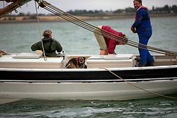UK ENGLAND WEST MERSEA 13SEP09 - The crew of a smack, including a canine, sail the historic sailing boat dredge for oysters during the annual Oyster dredge match off the coast of West Mersea, Essex, England...jre/Photo by Jiri Rezac / WWF UK..© Jiri Rezac 2009