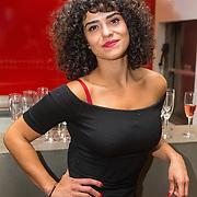 NLD/Amsterdam/20150929 - Premiere LULverhalen - Ladies on Stage, .....................