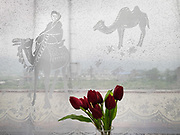 Detail of the curtain, showing Bactrian camels. Life in the train from Hong Kong to Urumqi (Xinjiang).