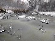 Nederland, Ubbergen,7-12-2012Bomen in de sneeuw. Besneeuwde bomen in het bos. Een bevroren ven.Foto: Flip Franssen/Hollandse Hoogte