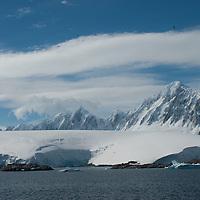 Wiencke Island, Antarctica.