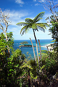 New Zealand, North Island, Near Tauranga, the beach at Bay of Plenty