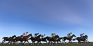 Leopardstown Christmas Festival Day Four 291213