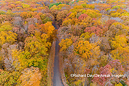 63876-02609 Aerial view of fall color trees and road Stephen A. Forbes State Park Marion Co. IL
