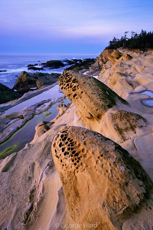 Sandstone Formation at Sunset, Shore Acres State Park, Oregon