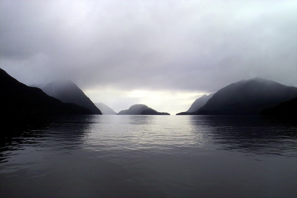 Doubtful Sound, Fjordland, New Zealand - named by Captain Cook, has he was unsure that he could navigate it by sail - and he worried that if he entered, he might not get back out. It was also visited by Alessandro Malaspina in 1793. ..There's two layers of water in Doubtful Sound - fresh water from the mountains on top, and saline water from the sea underneath. An abundance of deep sea life can survive here, even in these shallow waters, including black coral.