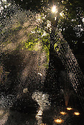 Anastasia's psychogram III<br /> <br /> I love the sun and the water!!!<br /> <br /> 58th Kifissia Flower Show<br /> <br /> 13/05/2012