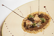 """The dish """"In the forest after the hunt"""", creamy partridge, marinated <br /> partridge and vegetables, a creation by chef José Avillez in Belcanto Restaurant in Lisbon."""
