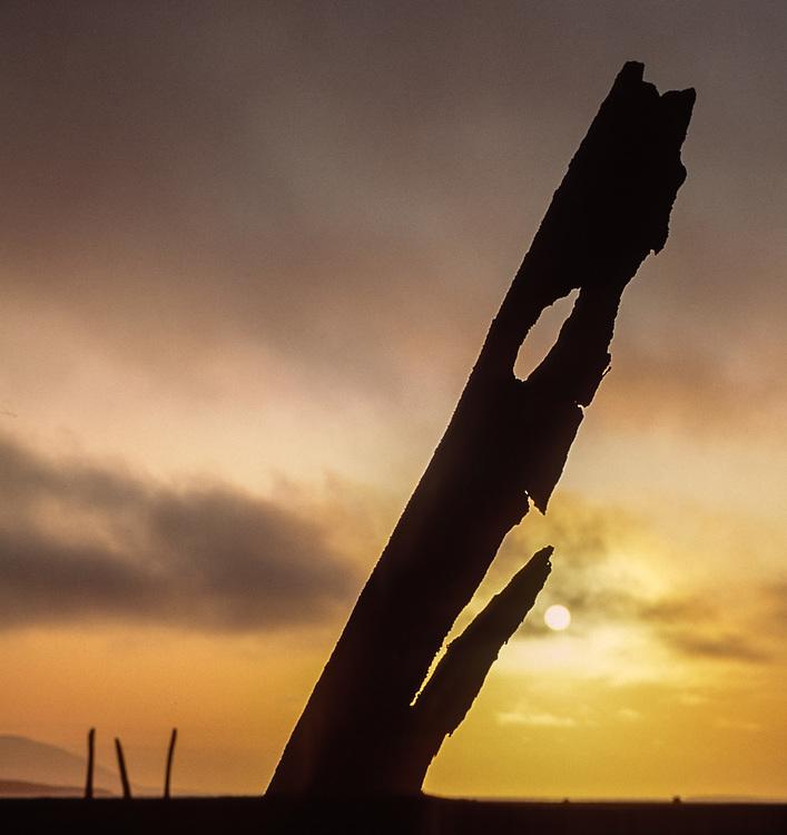Whle bone at sunset, Mechigmen Archeological Site, Chukostk Peninsula, NE Russia, 1992