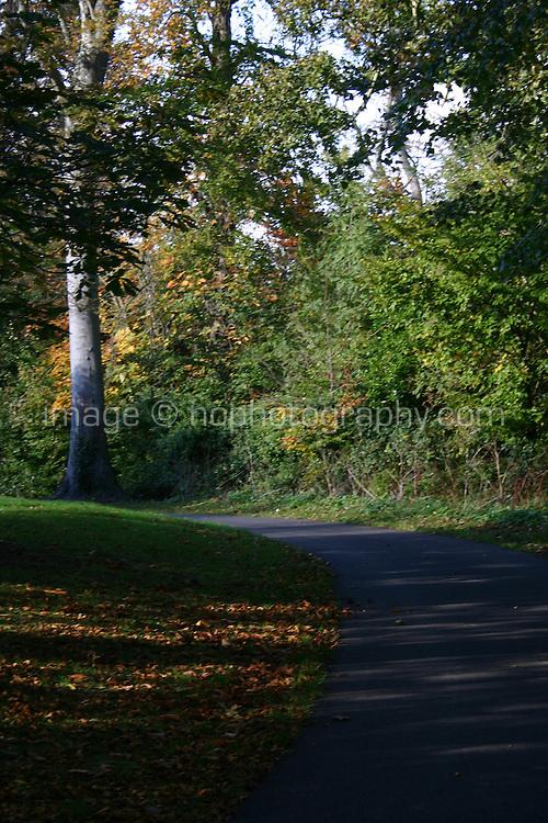 Cabinteely Park Dublin Ireland Slightly blurred