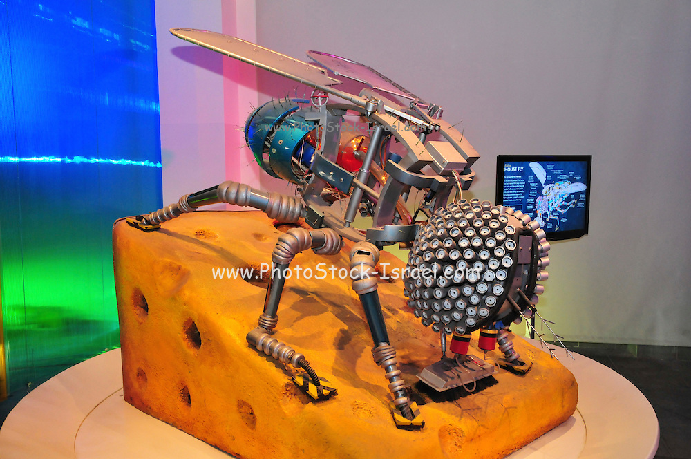 Israel, Haifa, MadaTech The Israel national Museum of Science The Robotic World exhibition. House fly robot