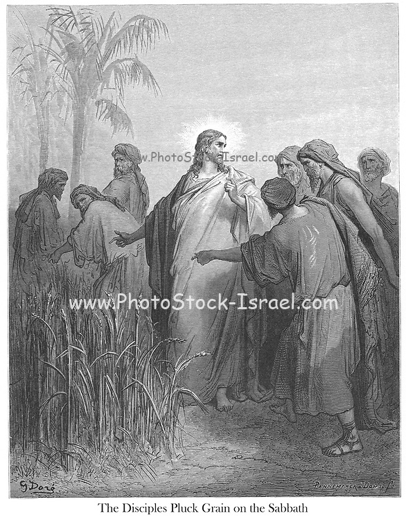 The Disciples Plucking Corn [Grain] on the Sabbath [Mark 2:23-25] From the book 'Bible Gallery' Illustrated by Gustave Dore with Memoir of Dore and Descriptive Letter-press by Talbot W. Chambers D.D. Published by Cassell & Company Limited in London and simultaneously by Mame in Tours, France in 1866