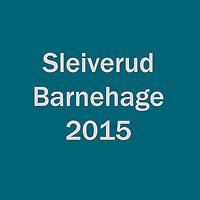 2015_Sleiverud