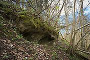 "Like recently exposed secrets calcareous rocky slope openings appear in broadleaved forest on slopes of river Ruņa, nature reserve ""Ruņupes ieleja"" (dabas liegums ""Ruņupes ieleja""), Kurzeme, Latvia Ⓒ Davis Ulands   davisulands.com"