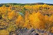 Autumn in reclaimed landscape. <br /> Greater  Sudbury<br /> Ontario<br /> Canada