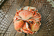 Seafood - Salmon, Dungeness Crab, Albacore Tuna, Oregon Coast Photos