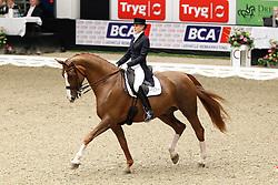 Ramel Antonia (SWE) - Seigneur<br /> JBK Horse Show Odense 2010<br /> © Hippo Foto - Leanjo de Koster