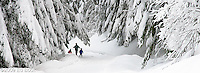 A mother and two young sons are having fun along the Mount Tahoma Trails in winter.