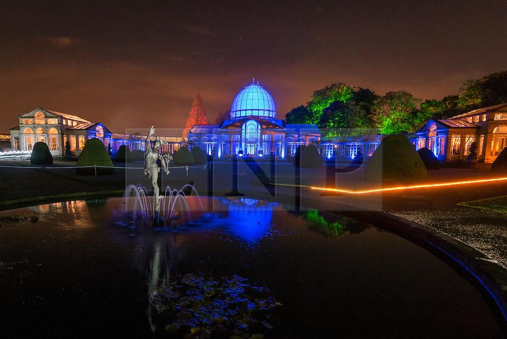 """© Licensed to London News Pictures. 18/11/2016. London, UK. The annual light show known as """"The Enchanted Woodland"""" opens at Syon Park in west London.  Syon House is the London home of the Duke of Northumberland and his family and, in the grounds designed by Capability Brown, a walking path takes visitors on a night-time tour of the park with their way illuminated by colourful lights. Photo credit : Stephen Chung/LNP"""